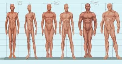 zsírégetés testtípus szerint