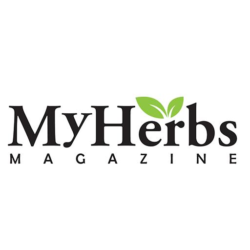 Gyermekláncfű élettani hatásai   Gyermekláncfű, Gyógynövények, Egészség