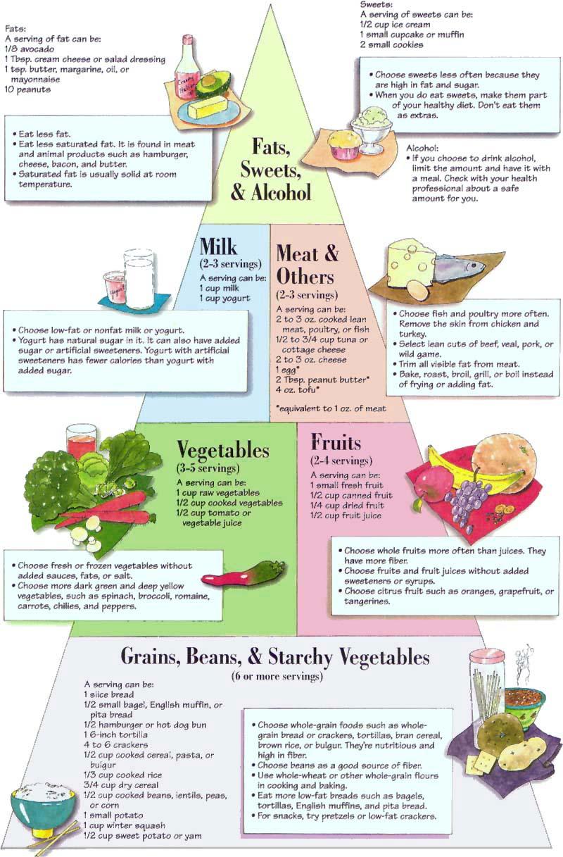 A leghatékonyabb diéták +15 kiló felett - Fogyókúra   Femina