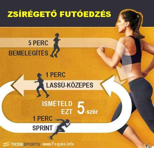 melyik a legjobb edzés fogyáshoz