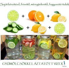 kiegészítő italok a fogyáshoz freshpet fogyás