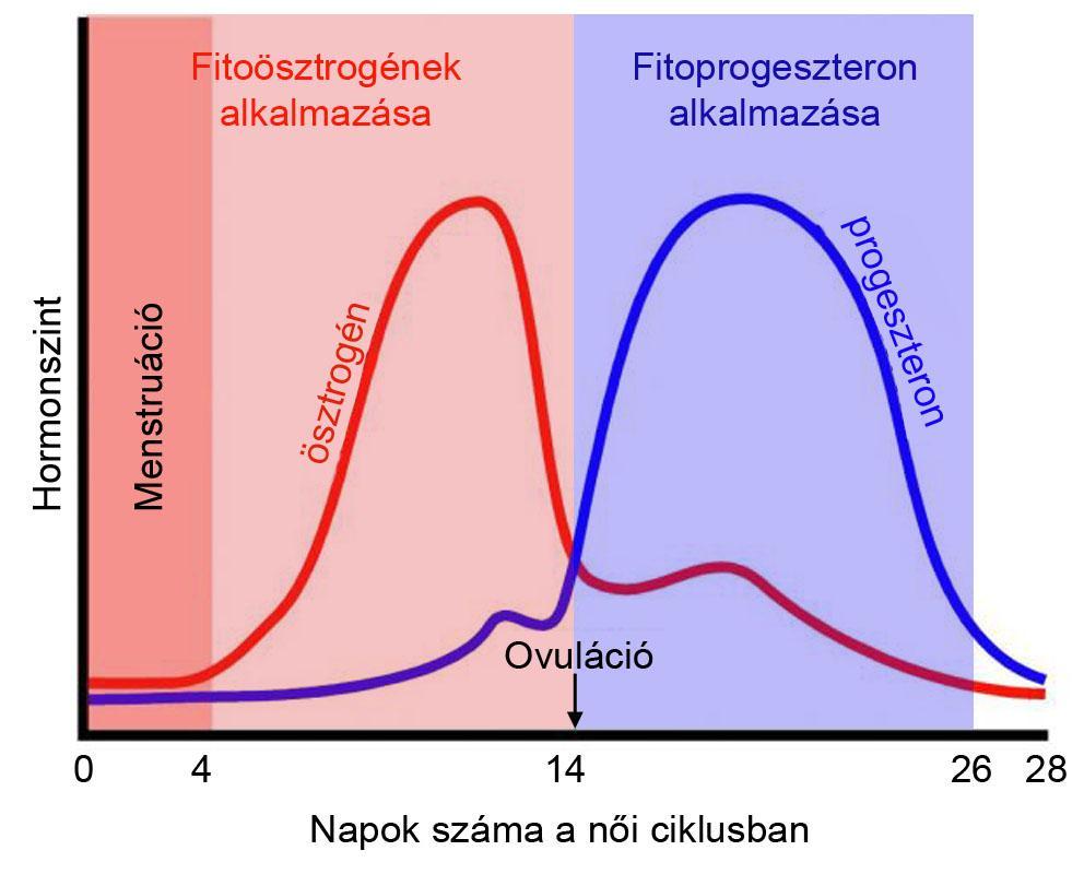 HormonOKOK :: Duciforradalom