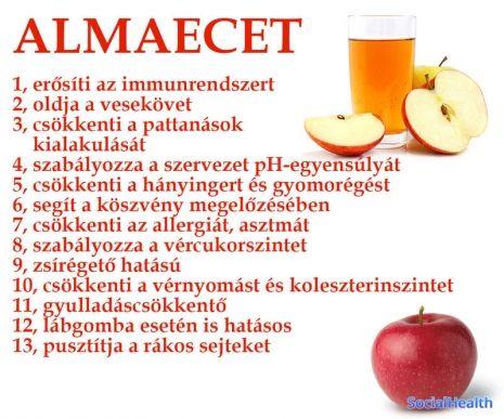 csökkenti a zsírégetőt)