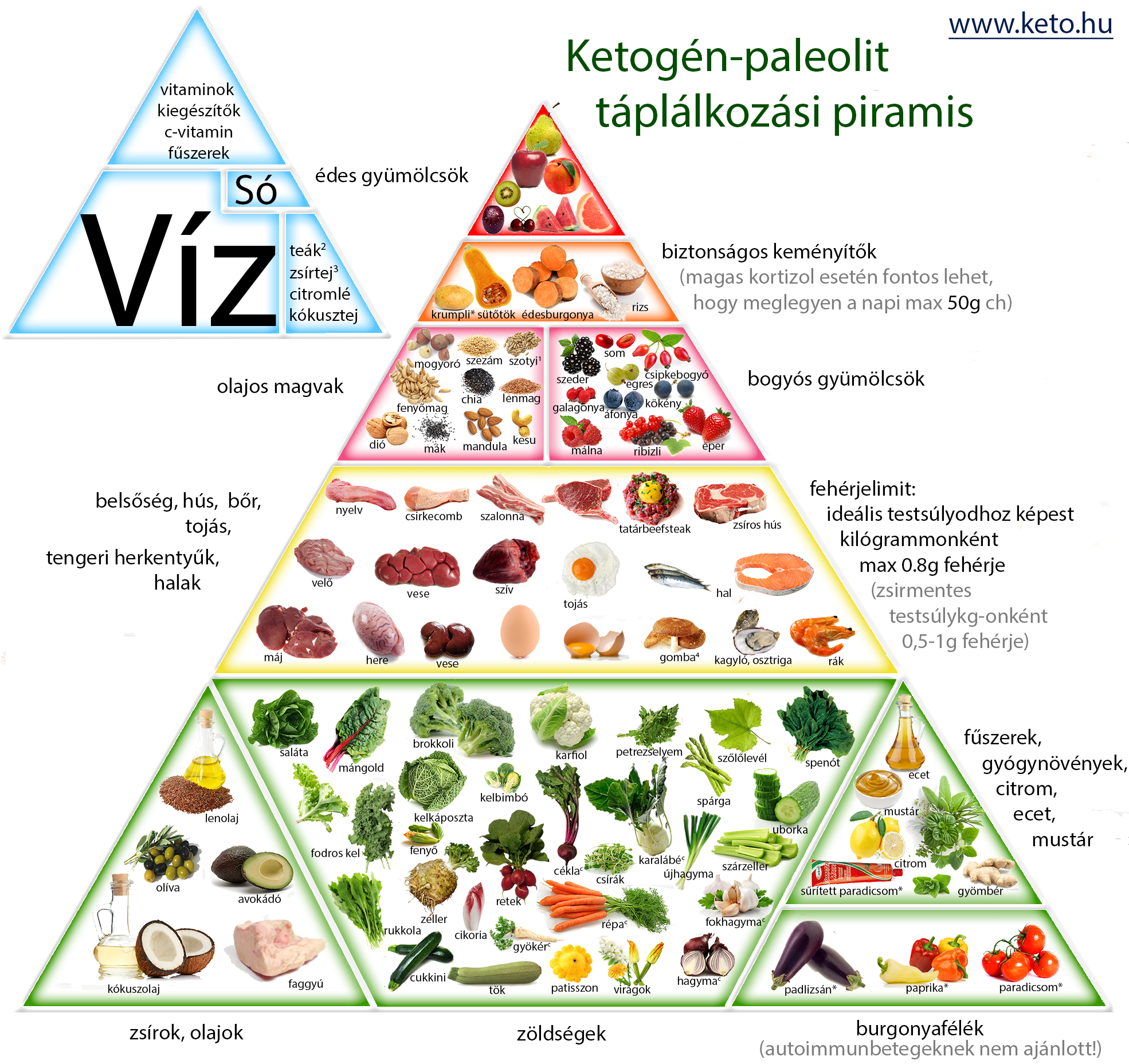 ketogén diéta vélemények