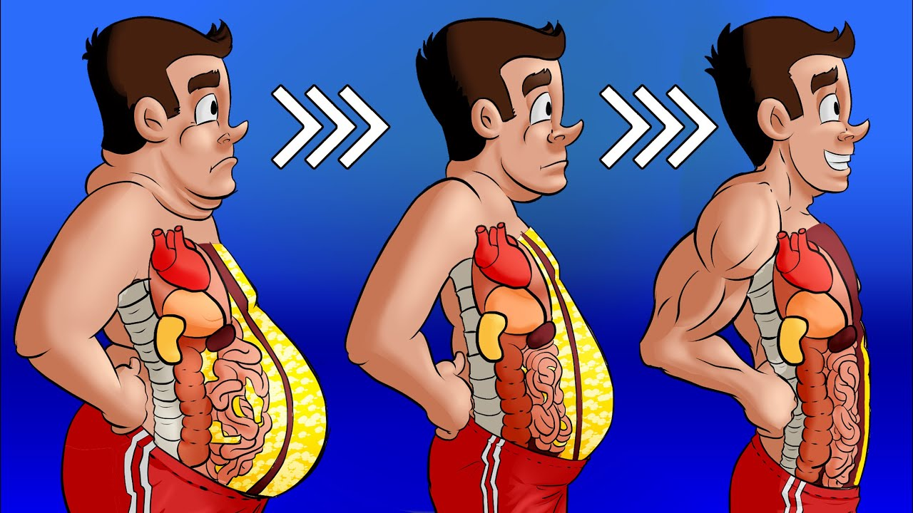 male belly fat loss tips