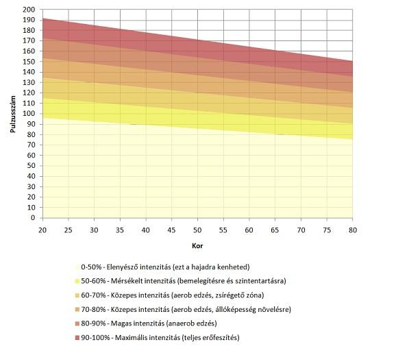 testmérések súlycsökkentő táblázat)