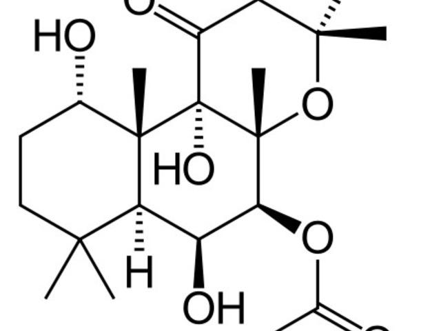 ZONIBON mg kemény kapszula - Gyógyszerkereső - EgészségKalauz