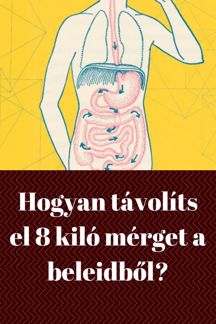 Hogyan távolíts el 8 kiló mérget a beleidből | Női egészség, Fogyás, Egészség tanácsok
