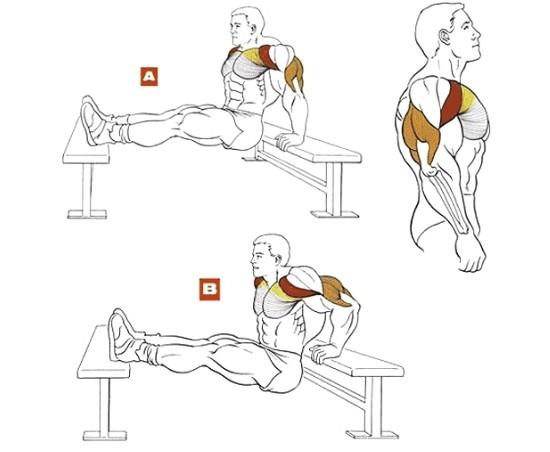 hogyan lehet elveszíteni az alsó hátulsó zsírt)