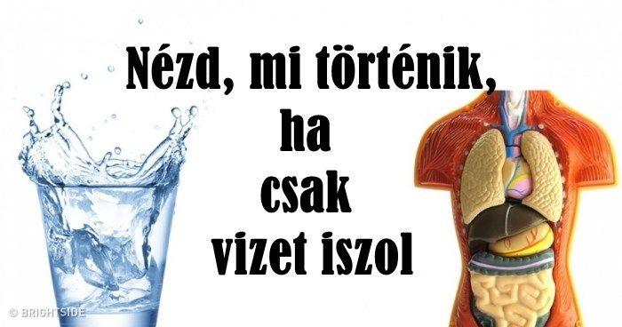 elveszíti a zsírokat)