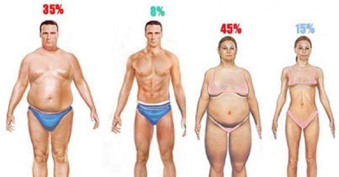 fogyni a testzsír
