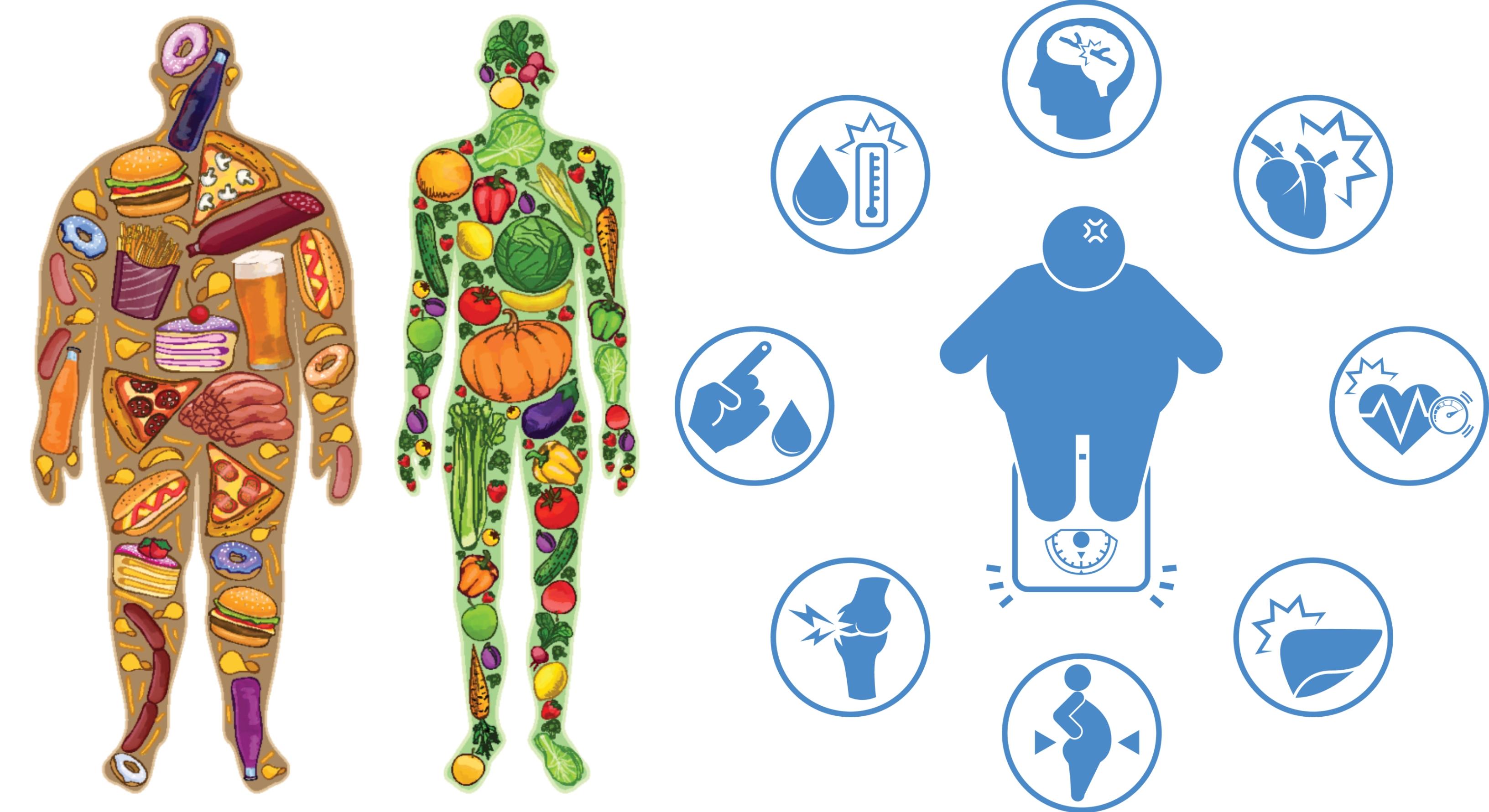A leghatékonyabb módszer a fogyáshoz - Hogyan lehet lefogyni 55 éves korban?
