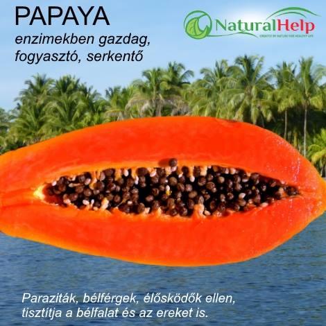 segít- e a papaya enzim a fogyásban?
