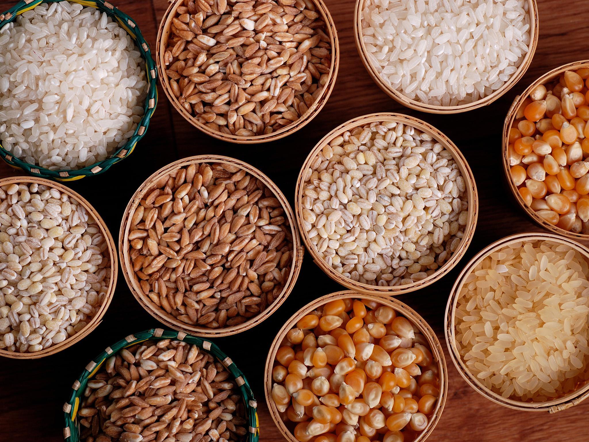 Terményszárítás - hogyan és miért – Agrárágazat