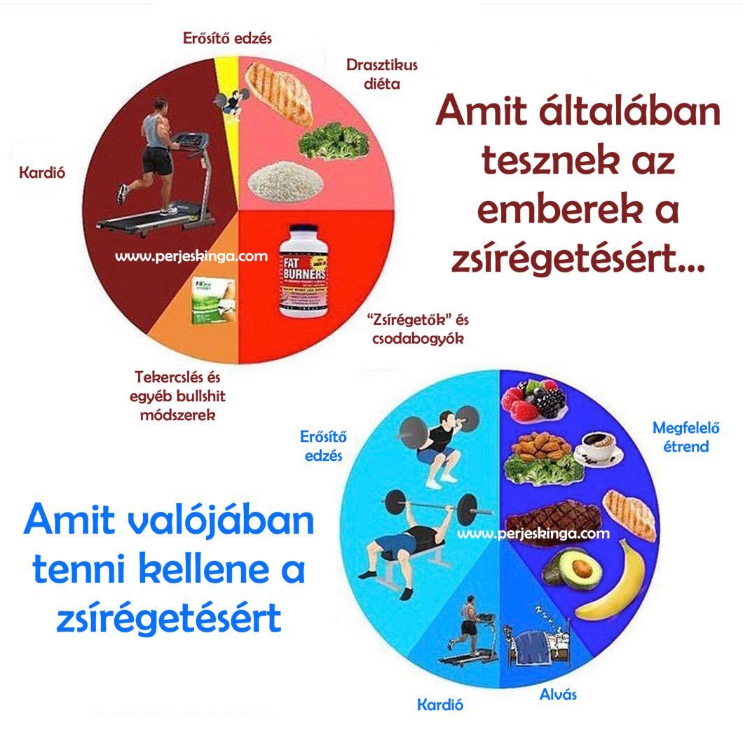 zsírégető nélkülözhetetlen anyagok)