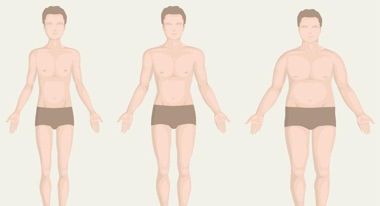 fogyás testtípusok)