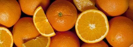 Level diéta – a hülyeség határtalan   Testépítek