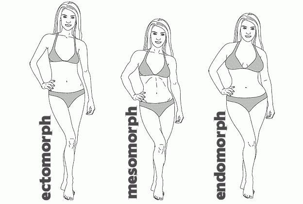 testtípusok a zsírégetés érdekében)