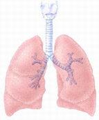 Tüdőtágulat: az emfizéma és tünetei