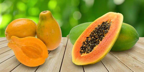 a papaya lefogy?