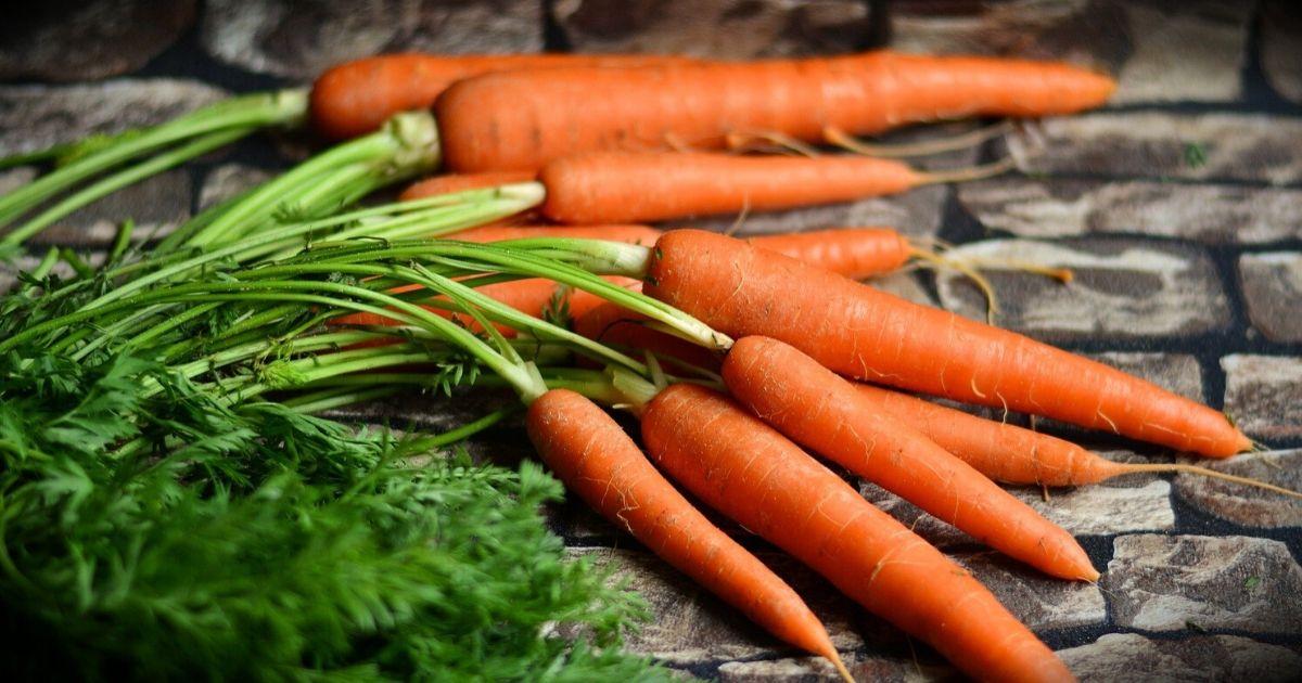 A 10 legjobb zsírégető zöldség - Fogyókúra   Femina