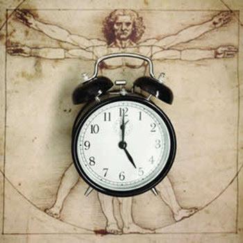 cirkadián óra és fogyás