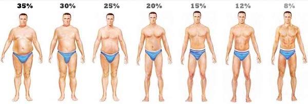 a testzsír veszteség egyenlete)