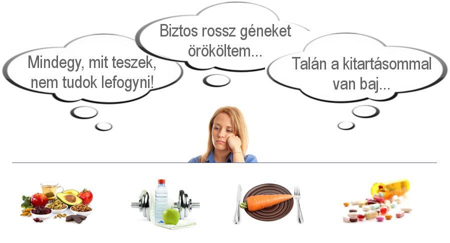 az öt legfontosabb zsírégető ital zsírégető szlovénia