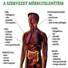 az 5 os fogyás egészségügyi előnyei)