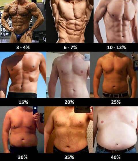 elveszíti a testzsír 20 százalékát)
