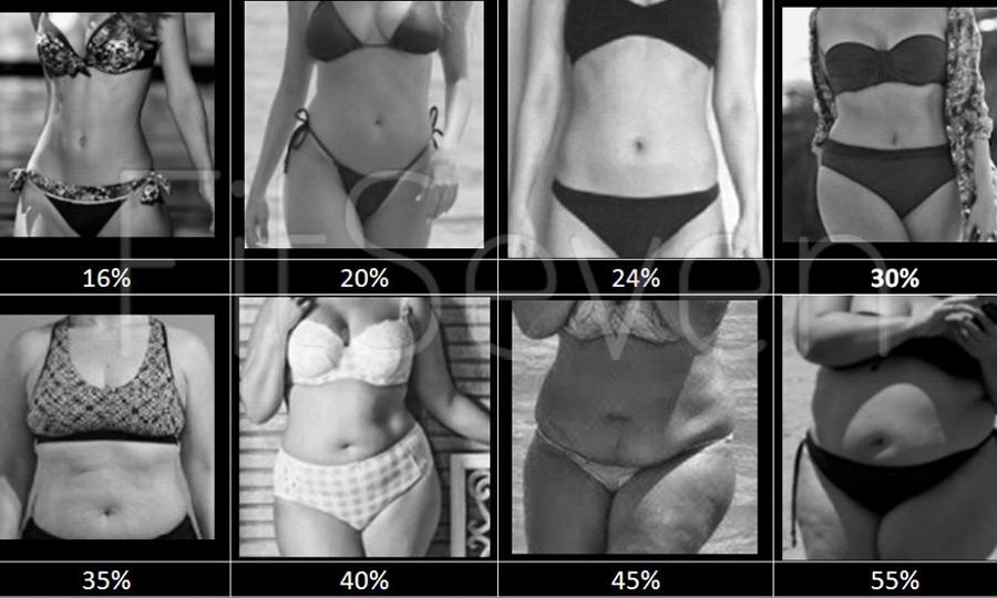 Testzsírszázalék, avagy mit mutat a mutató? - Mindennapi Matekunk