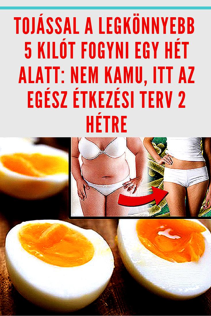 zsírégető 2 hét alatt)